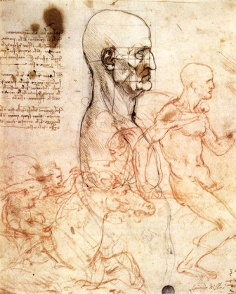 da vinci study of anatomy
